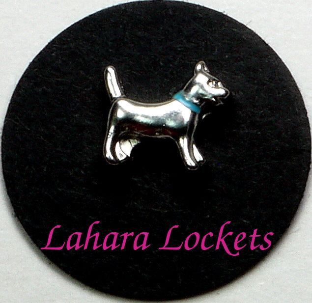 Dog Floating Charm Blue Collar Lahara Lockets