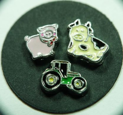 Farm Floating Charms for Memory Lockets